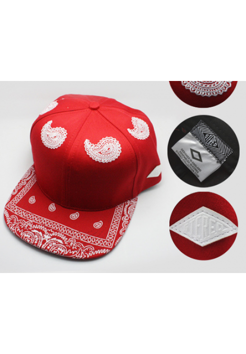 Stereo Paisley Classic Snapback Hat (Red)